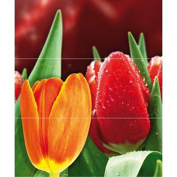 Syntia Tulip А Панно (из 3пл) 60х50