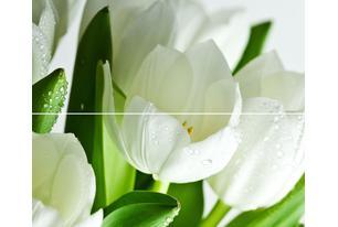 Arco Verde Tulipan Панно (из 2-х пл.) 50x60