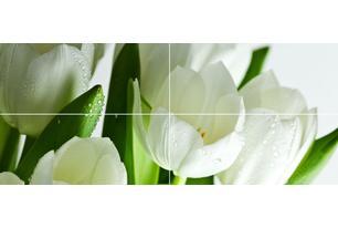 Arco Verde Tulipan Панно (из 4-х пл.) 50x120