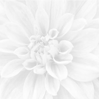 Crisantemo Панно из 3-х шт 36-05-00-463-0 60х60