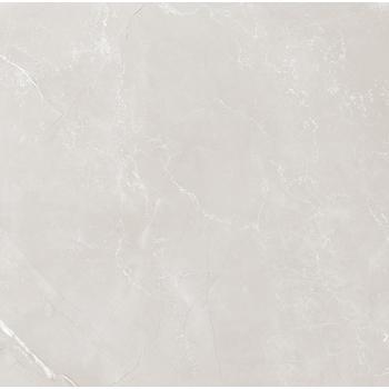 Vitrum Grey Керамогранит серый 60x60 полированный